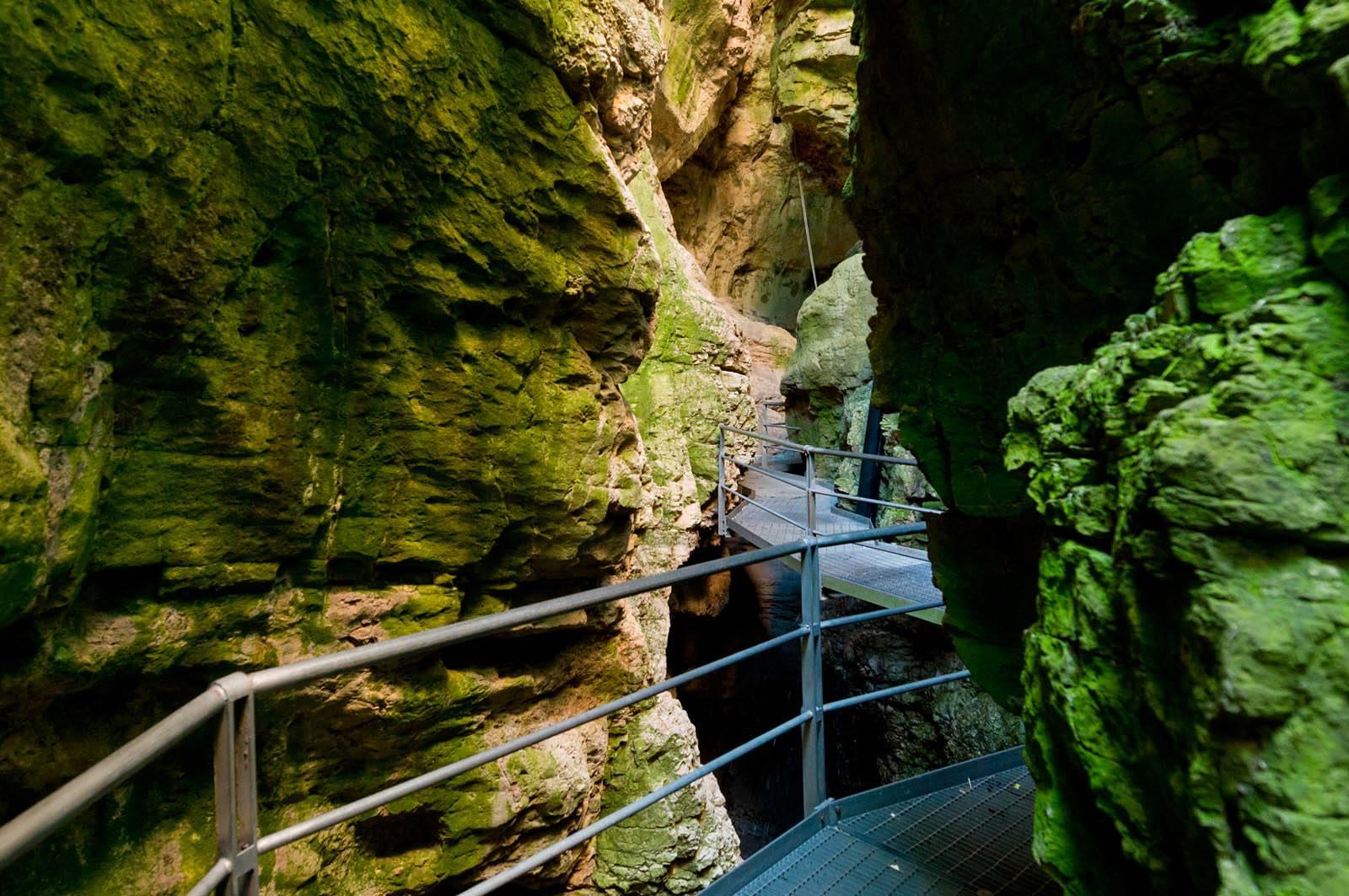 canyon-rio-sass